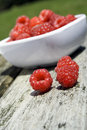 Free Raspberries Stock Photography - 5761202