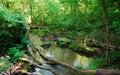 Free Creek Royalty Free Stock Image - 5765006