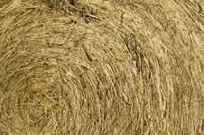 Hay Bale Roll Background Texture Stock Photo