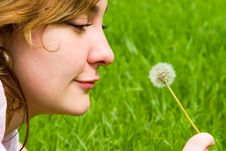 Girl Blowing On The Dandelion Stock Photography
