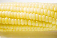 Free Corn Cob Stock Photo - 5764410