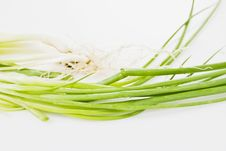 Free Spring Onions Stock Image - 5765351