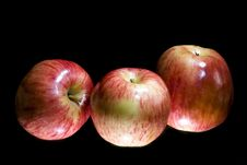 Apples On Black Royalty Free Stock Photo