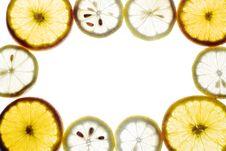 Free Sliced Orange And Lemon Royalty Free Stock Photo - 5766235