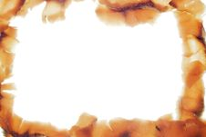 Free Sliced Fish On White, Frame Stock Photo - 5766240