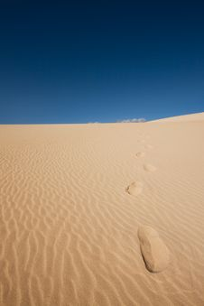 Free Footsteps In The Sand Royalty Free Stock Photo - 5767195