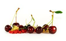 Free Collage Of Fruits And Berries Stock Photography - 5767362