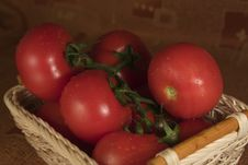 Free Tomatoes In The Basket Royalty Free Stock Photography - 5768017