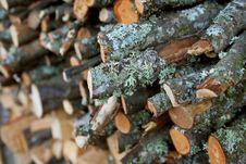 Free Background Of Wood Stock Photos - 5768283
