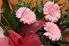 Free Pink Gerberas Royalty Free Stock Photography - 5768307