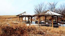 Sky Park In Seoul In Winter Royalty Free Stock Photo