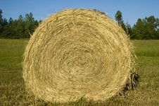 Free Hay Bale Roll Blue Sky Royalty Free Stock Photos - 5769458