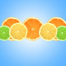 Free Fresh Citrus Fruits Stock Photography - 5770692