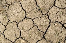 Free Dry Ground. Stock Photography - 5771322
