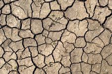 Free Dry Ground. Royalty Free Stock Photos - 5771328