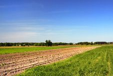 Free Farmland Royalty Free Stock Image - 5772136