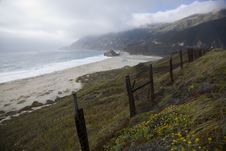 Free Wild California Coast Stock Images - 5772174