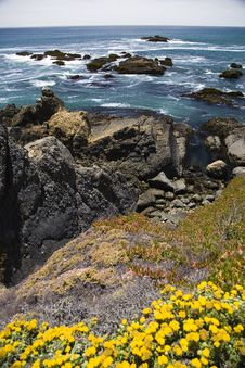 Wild Central California Coast Royalty Free Stock Photography