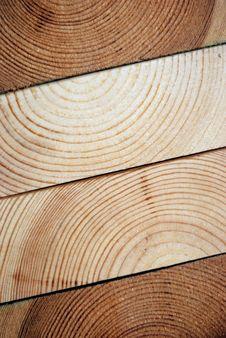 Free Slices Of Tree Stock Image - 5772521