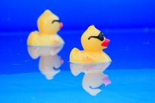 Free Rubber Ducky Royalty Free Stock Photos - 5773338
