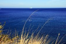 Free Horizon & Blue Electric Summer Sea Stock Photography - 5774602