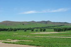 Grasslands Of Bashang Stock Images