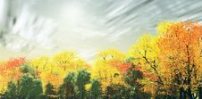 Free Wonderful Autumn Landscape Royalty Free Stock Image - 5778176