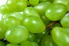Free Green Grapes Royalty Free Stock Photography - 5778217