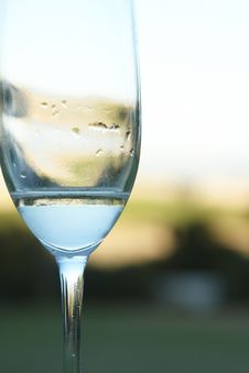 Free Almost Empy Glass Of Wine Royalty Free Stock Photo - 5778315