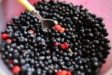 Free Bilberries With Strawberry Stock Photography - 5779762