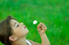 Free Girl With Dandelion Stock Photos - 5781533