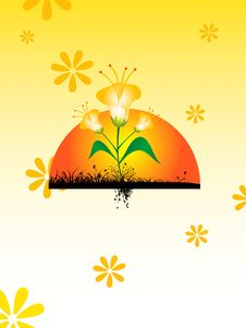 Flower With Rising Sun Stock Images