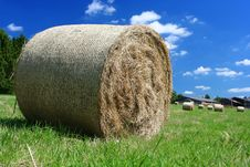 Free Hay Bale Stock Photography - 5786702
