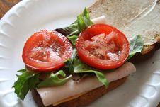 Free Healthy Sandwich Stock Photos - 5788013