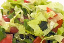 Salad, Tomatoes, Onions Royalty Free Stock Photography