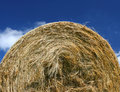Free Hay Bale Detail Royalty Free Stock Image - 5794546