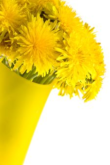 Closeup Dandelions In The Glass Vase Royalty Free Stock Photography