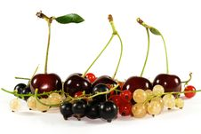 Free Collage Of Fruits And Berries Stock Images - 5794554