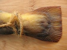 Free A Hot Smoked Fish Royalty Free Stock Images - 5796109
