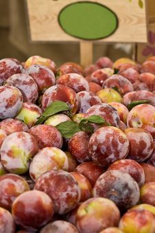 Free Red Plums Stock Images - 5796394
