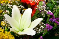 White Lily In Bouquet Stock Photo