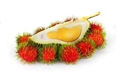 Free Durian And Rambutans Royalty Free Stock Photos - 5799558