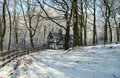 Free Worsley Woods In Winter Stock Photography - 584842