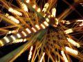 Free Close Up Of Spinning Ferris Wheel Royalty Free Stock Image - 589886