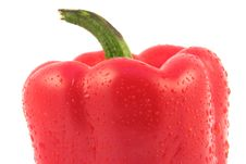 Free Red Pepper Close-up Royalty Free Stock Photo - 582265