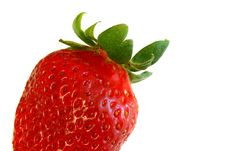Free Single Strawberry Royalty Free Stock Photo - 582325