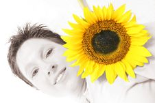 Free Face Od A Sunflower Stock Image - 584291