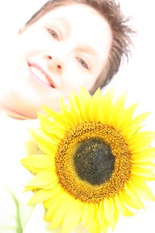Free Face Od A Sunflower Stock Photos - 584293