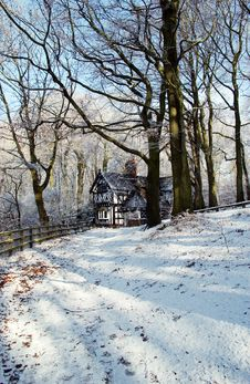 Free Worsley Woods In Winter Royalty Free Stock Photos - 584908