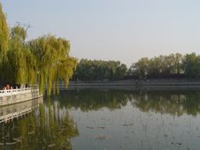 Free Beijing China - Willows Beihai Park Royalty Free Stock Image - 585356